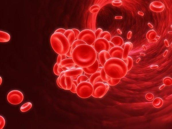 Народные средства для разжижения крови