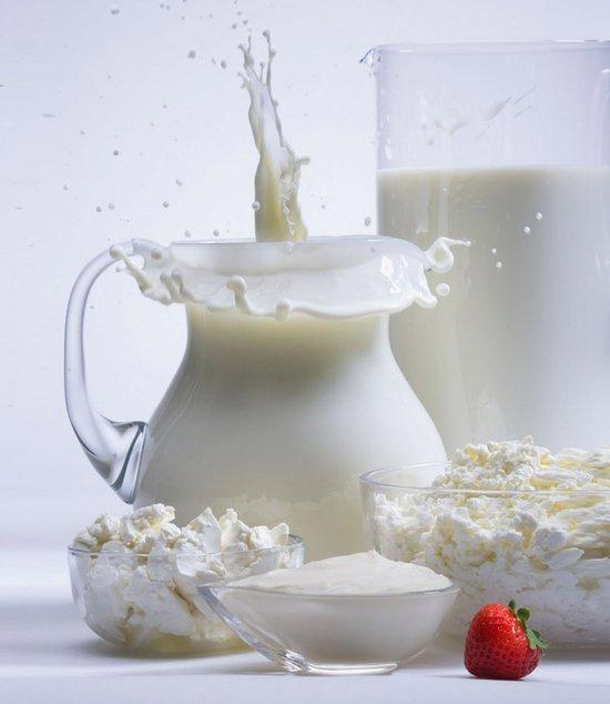 Молочный гриб и его лечебные свойства