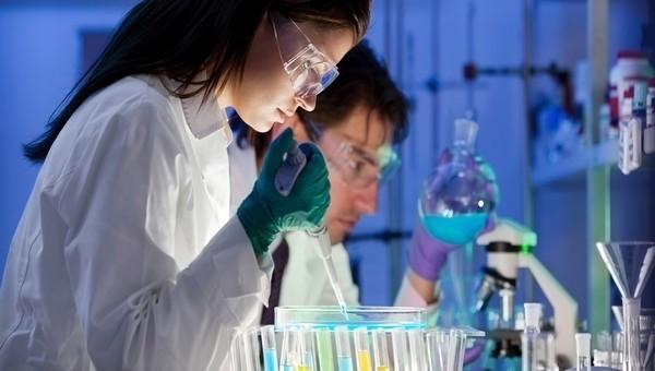 Российские ученые открыли новое природное болеутоляющее средство