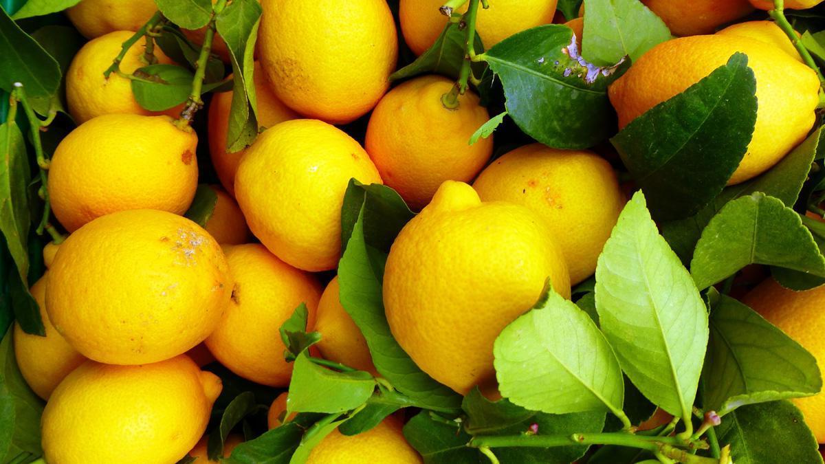 Медики открыли новые свойства витамина С...