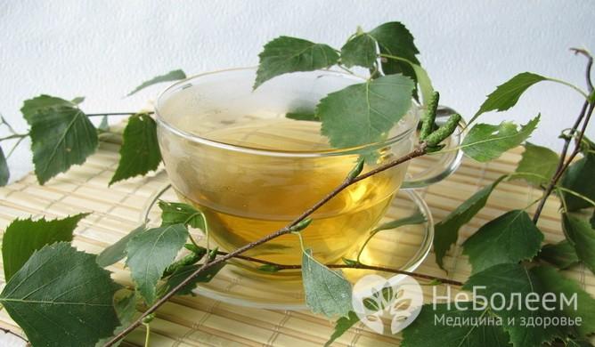 Домашние средства, помогающих при желчнокаменной болезни: настой листьев березы