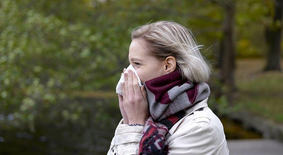 Как отличить сезонную аллергию икоронавирус: названы главные признаки