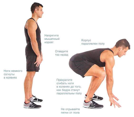 Растяжка спины и позвоночника: расслабляем зажатые мышцы.