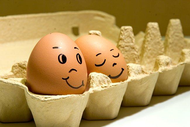 7 удивительно полезных свойств яиц о которых мало кто знает. Употребляй их ежедневно