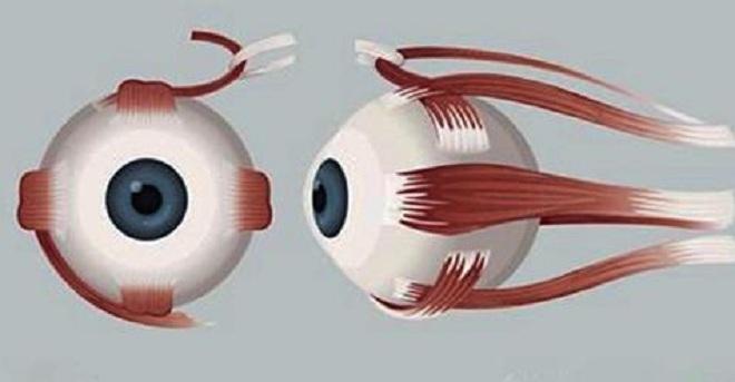 Восстановить зрение и избавиться от глазных болезней поможет это мощное домашнее средство из 4 ингредиентов!