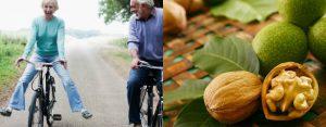 Несколько орехов, вода и немного терпения — настоящий эликсир вечной молодости