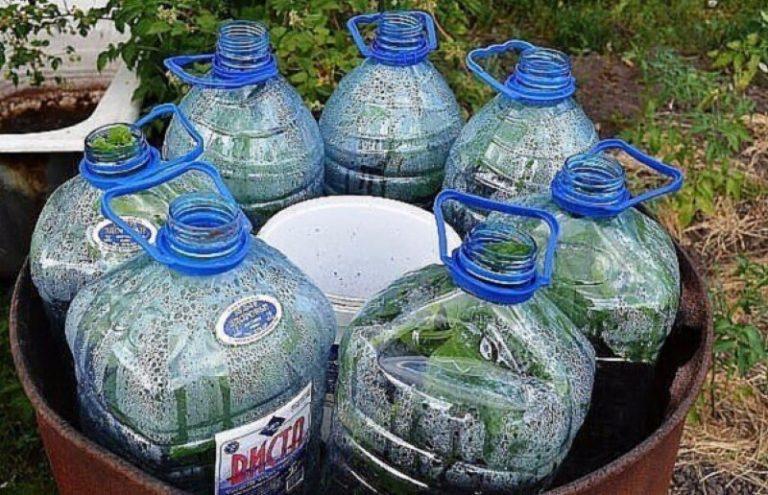 Новый способ — огурцы в бутылках, удобно и выгодно!