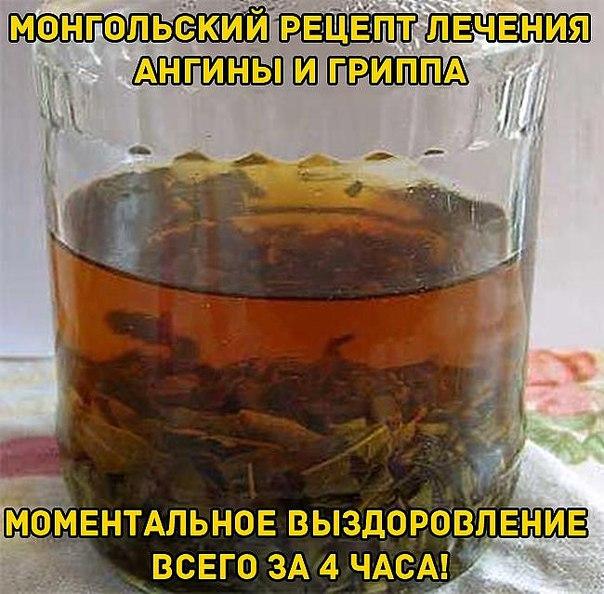 МОНГОЛЬСКИЙ РЕЦЕПТ ЛЕЧЕНИЯ АНГИНЫ