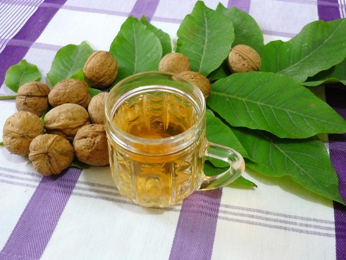 В мае и июне собираем листья грецкого ореха и укрепляем ими здоровье!