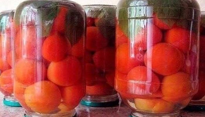 Консервируем помидоры с малиновыми листьями