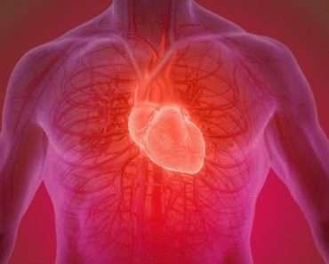 12 основных питательных веществ для здорового сердца!