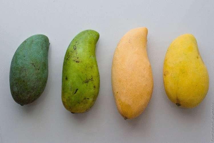 Как выбрать манго, чтобы оно было спелым и вкусным