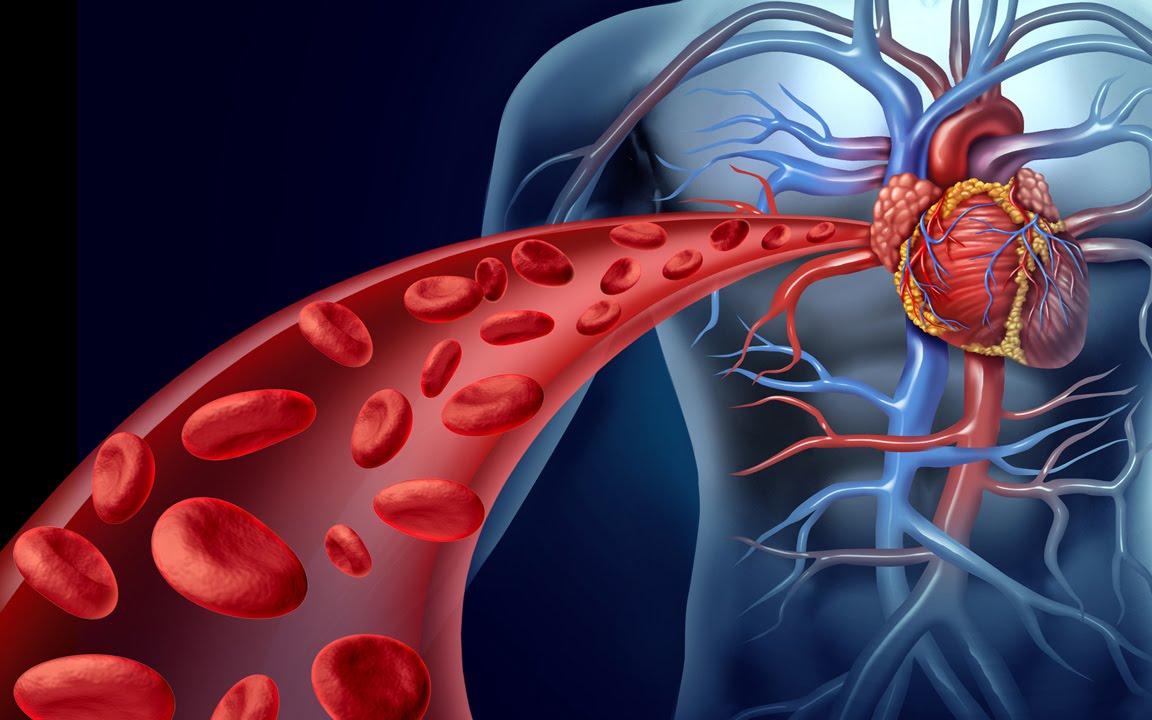 Естественные методы очищения крови с помощью 6 вкусных напитков