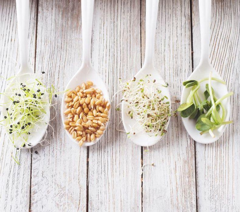 Как правильно употреблять орехи, крупы и бобовые, чтобы не навредить здоровью