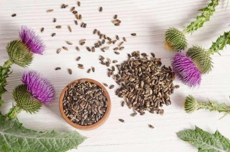 6 мощных продуктов и трав для клеточного омоложения печени